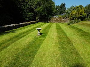 grass cuts in Lenzie and Bearsden