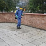 Pesticide spraying and Glasgow lawn care