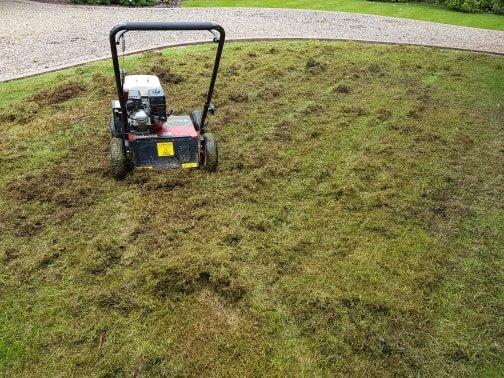 lawn treatment