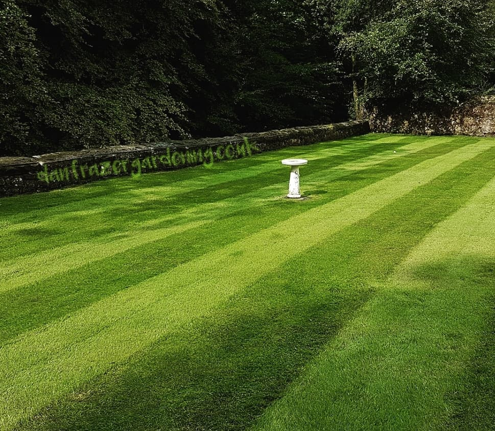 Lawn treatment in Lenzie